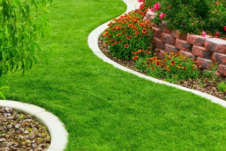 How to do Landscaping? Consider 7 steps